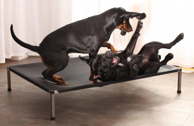 pelíšky pro velké psy pelech pro velké psy